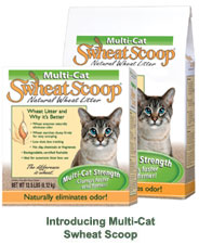 Swheat Scoop Cat Litter
